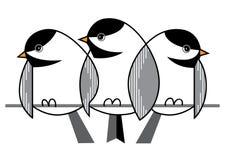 Sparrows in winter Stock Photos