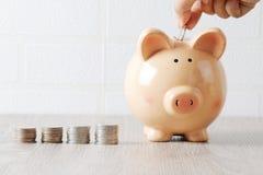 Sparschwein auf dem Holztisch und den Münzen stockbilder