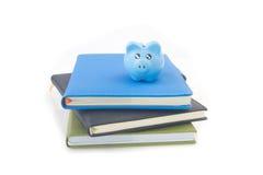 Sparschwein über Stapel Büchern auf lokalisiertem weißem Hintergrund Lizenzfreies Stockfoto