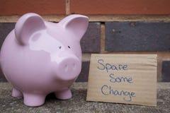Sparschwein, das um Geld bittet. Stockbilder