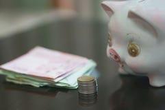 Sparschwein für die Rettung lizenzfreie stockfotos
