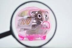 Sparschwein hinter einer Lupe Stockfotografie