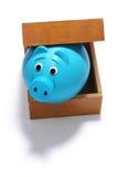 Sparschwein im Kasten Lizenzfreies Stockfoto