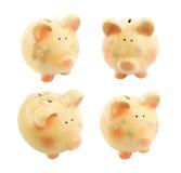 Sparschwein mit den medizinischen Flecken eingestellt Stockbilder