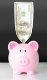 Sparschwein mit 100 Dollar Stockfotos