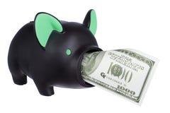 Sparschwein mit Dollar-Anmerkung Stockfotos