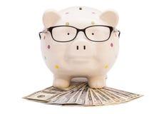 Sparschwein mit Geld und Gläsern Lizenzfreie Stockfotografie