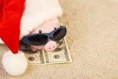 Sparschwein mit Santa Claus-Hut, der auf Tuch vom Dollar hundert Dollar mit Sonnenbrille auf dem Strandsand steht Stockbild