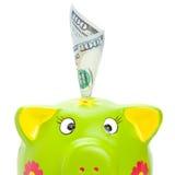 Sparschwein mit 100 US-Dollars in ihm Stockbilder