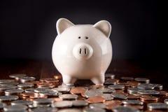 Sparschwein u. Münzen Stockfoto
