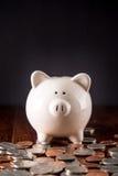 Sparschwein u. Münzen Lizenzfreie Stockfotos