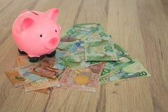 Sparschwein und ein Bündel Dollar von Neuseeland Geld savin Lizenzfreie Stockfotos