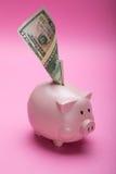 Sparschwein und Geld auf rosa Pastellhintergrund stockfotografie