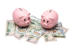 Sparschwein und Geld auf weißem Hintergrund stockfotografie