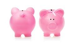 Sparschwein: Zwei Gesichtspunkte Lizenzfreie Stockfotos