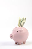 Sparschweinart-Geldkasten mit hundert Dollar, die in Schlitz in einem weißen Studiohintergrund fallen Stockbilder