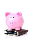Sparschweingeldbörse lizenzfreies stockbild