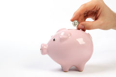 Sparschweingeldkasten mit dem Groschen, der in Schlitz fällt Stockfotografie