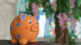 Sparschweinwartegeld stock video