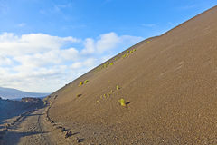 Sparse vegetation on volcanic hills in Timanfaya National Park Royalty Free Stock Image