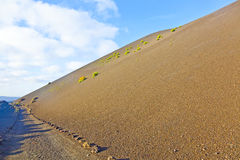 Sparse vegetation on volcanic hills in Timanfaya National Park w Royalty Free Stock Photography