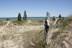 Sparsely Vegetated Sand Dune Overlooking Lake Huro Royalty Free Stock Photography