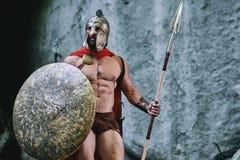 Spartaanse strijder in het hout stock foto's