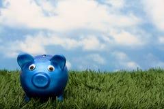 Sparungen Lizenzfreies Stockfoto