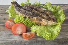 Sparus aurata arrostito con i pomodori e l'insalata verde su fondo di legno Fotografie Stock Libere da Diritti