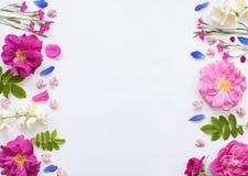 Spase emty del plano del witj floral romántico de la endecha Foto de archivo libre de regalías