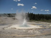 Spasmodic Geyser Stock Photography