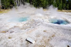 Spasmodic Geyser Stock Photo