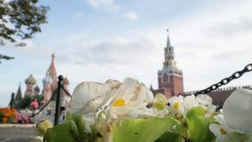 Spasskaya Tower and St Basil`s behind white flowers stock video footage