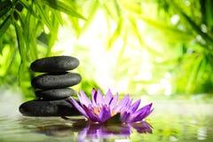 Spastilleben med lotusblomma- och zenstenen bevattnar på Royaltyfri Bild