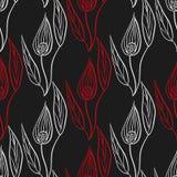 Spathiphyllum-Hintergrund Lizenzfreies Stockfoto