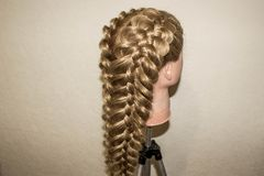 Spatial braids of 5 strands. On the training mannequin with hair Stock Photography