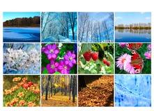 Spatie met twaalf gekleurde beelden van aard voor kalender Royalty-vrije Stock Foto