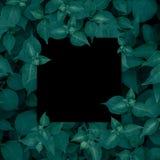 Spatie voor de reclame van kaart of uitnodiging Zwart frame Stock Afbeelding