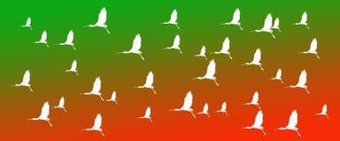 Spatole euroasiatiche degli uccelli del fondo dell'intestazione sul fondo arancio verde di pendenza fotografie stock