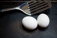Spatula and eggs Royalty Free Stock Image