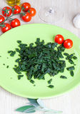 Spatzle, small dumplings with spinach and tomatoes royalty free stock photography