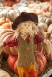 Spaventapasseri della bambola di ringraziamento Immagine Stock