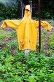 Spaventapasseri giallo Fotografia Stock Libera da Diritti