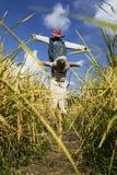Spaventapasseri nel campo in Chiang Mai Thailand immagini stock libere da diritti