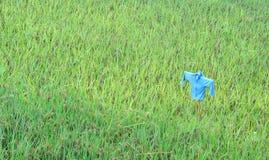 Spaventapasseri nella risaia Fotografia Stock Libera da Diritti