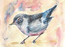 Spaventato poco uccellino Immagini Stock Libere da Diritti