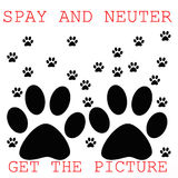 Spay ans neuter Royalty Free Stock Photography