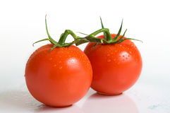 Spayed tomatoes. Sprayed tomatoes on a white surface Stock Image