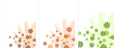 Spazii in bianco d'angolo del fiore Immagine Stock