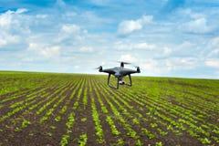 Spazio aereo dei campi agrari da un quadrocopter Fotografia Stock Libera da Diritti